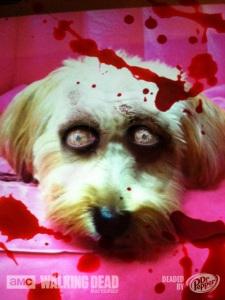 zombiedog